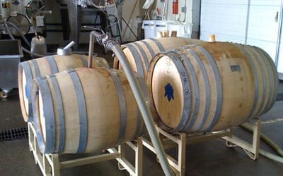 Abiouness Winery Client Profile