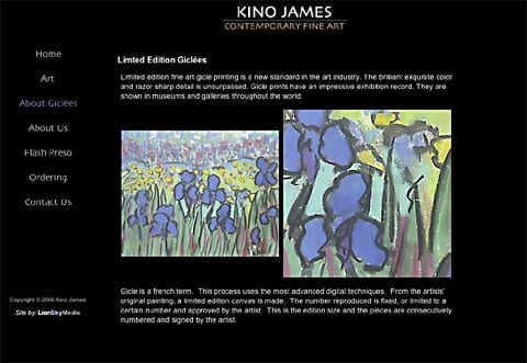 Kino James Contemporary Art