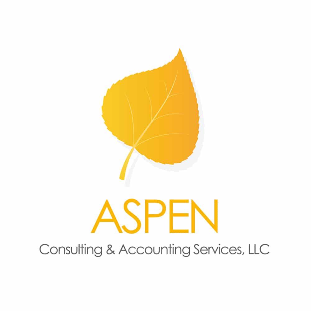 Branding & Logo Design 30 LionSky Logo Aspen Consulting 1