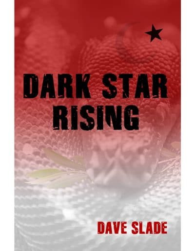 Dark Star Rising Book Cover