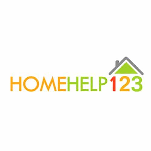 Branding & Logo Design 15 LionSky Logo HomeHelp123 1