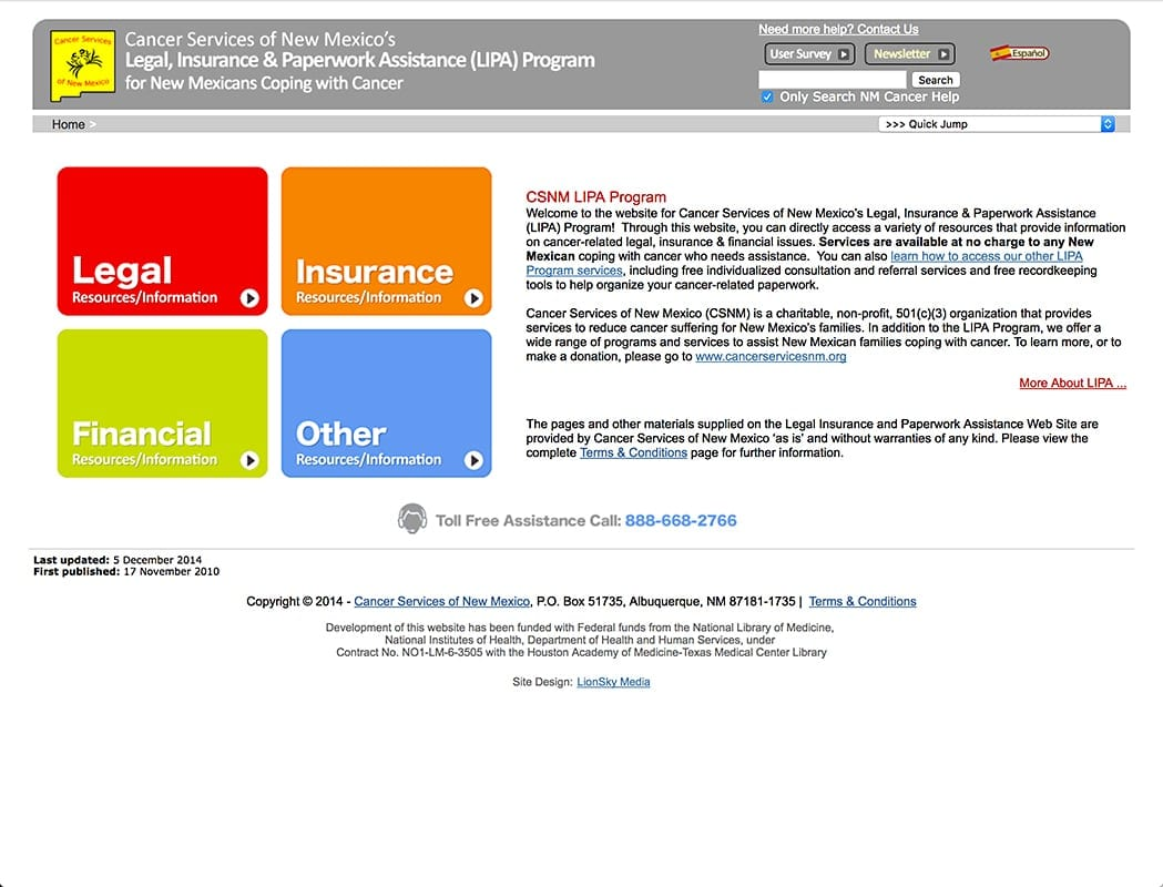 Website Designs 47 LionSky Websites SEO Cancer Services NM