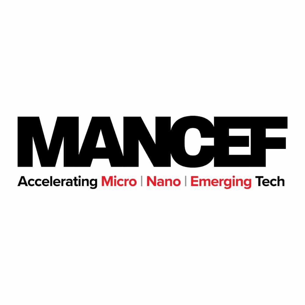Logo Design Samples 2 LionSky MANCEF Logo
