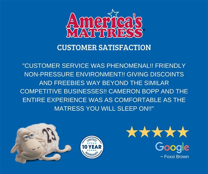 Reputation Management 5 LionSky Americas Mattress Review